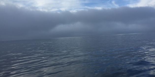 Fog Clears